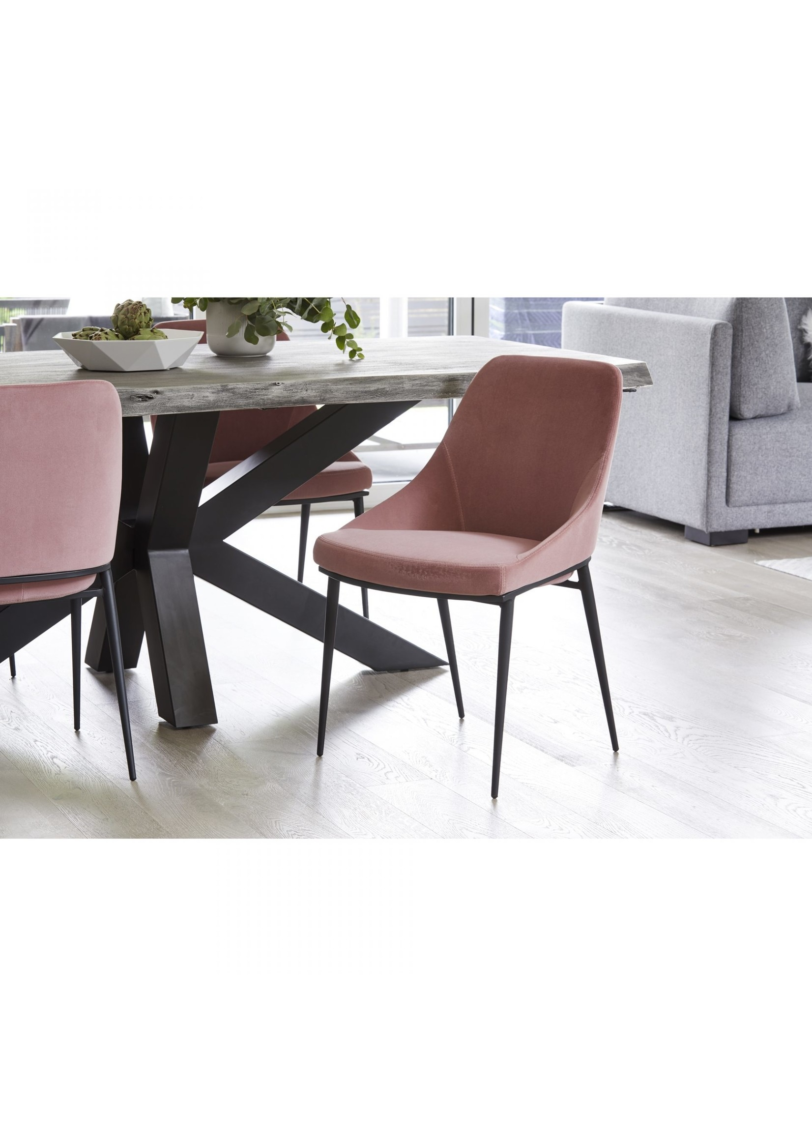 Moes Home Collection MOES Sedona Dining Chair Pink Velvet