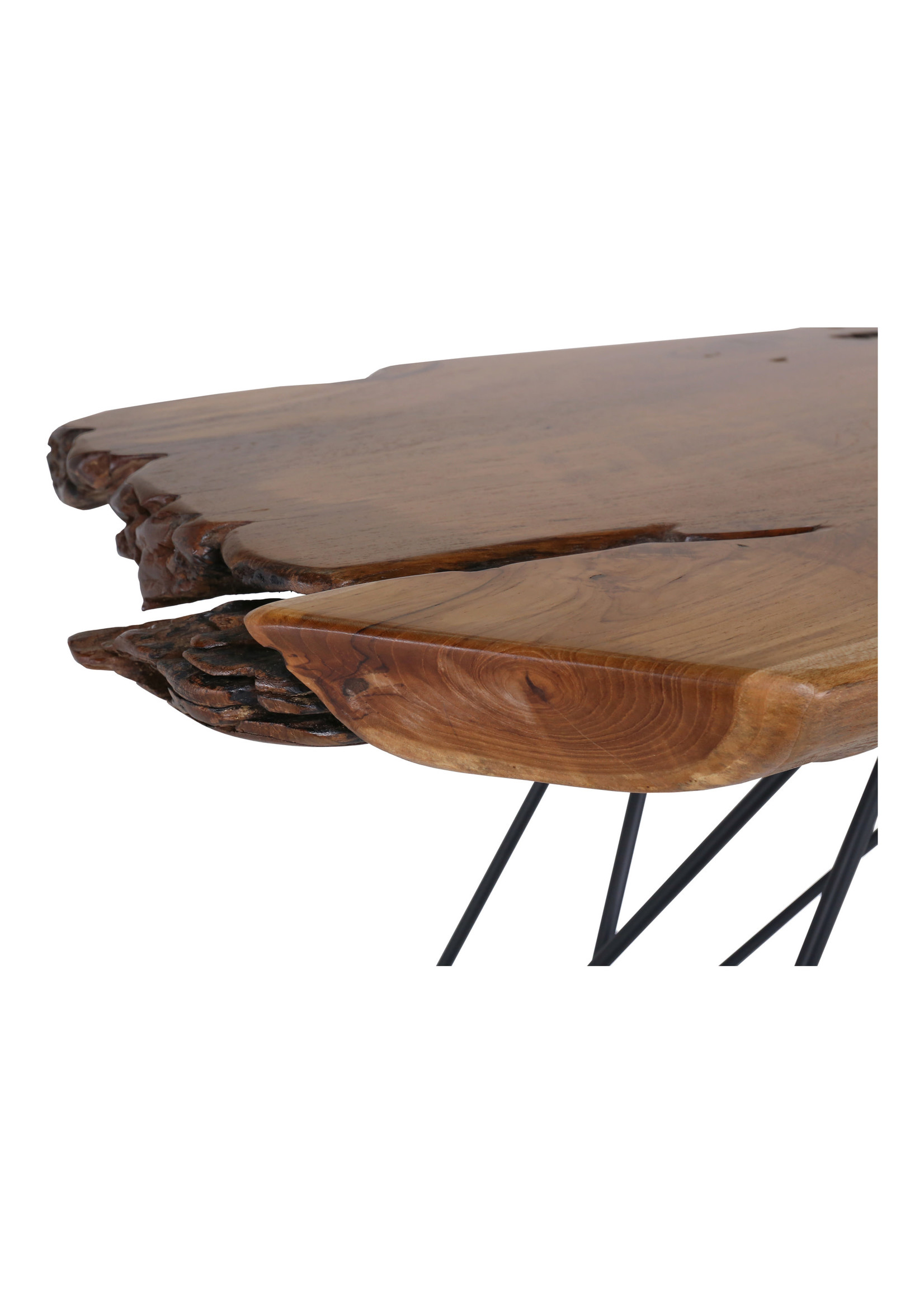 Moes Home Collection Tectona Console Table Caramel by MOES