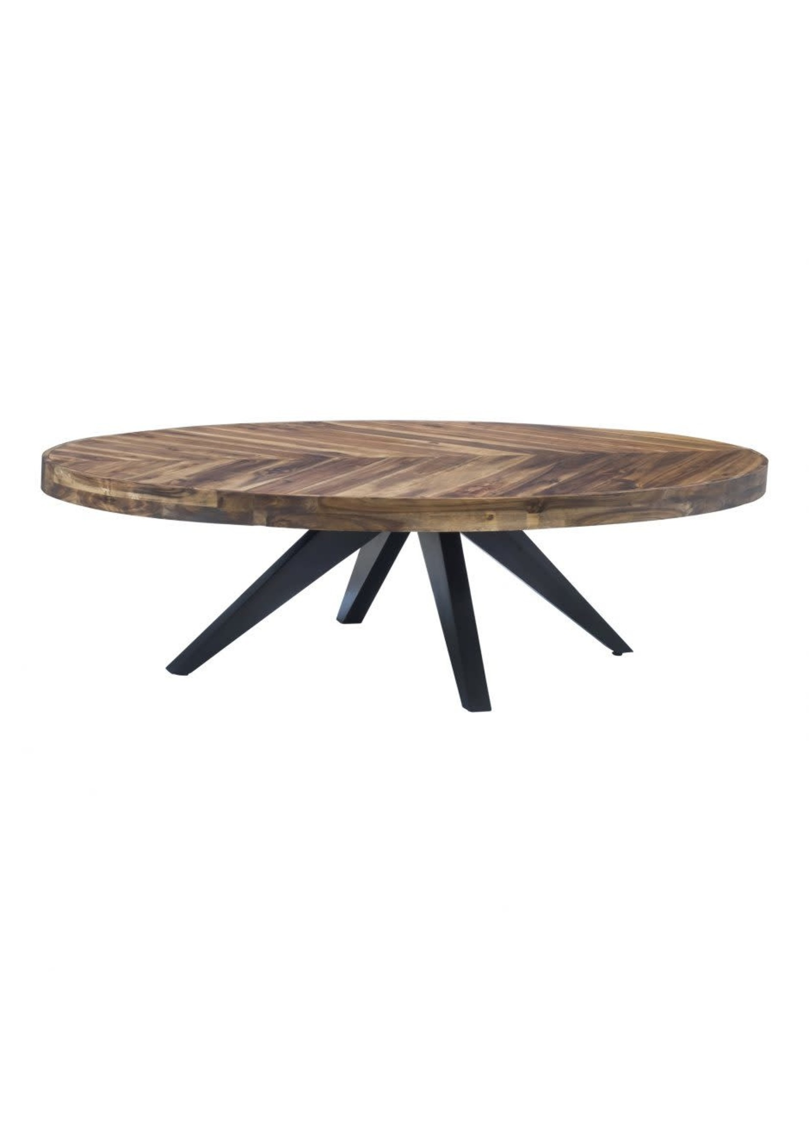 Moes Home Collection MOES Parq Oval Coffee Table
