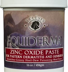 Equiderma Equiderma Zinc Oxide Paste for Pastern Dermatitis & Sunburn - 16oz