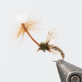 Dandelion Soft Hackle Pheasant Tail - Per 6