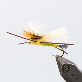 Karnopps Olive Skwiggler Stone - Per 6