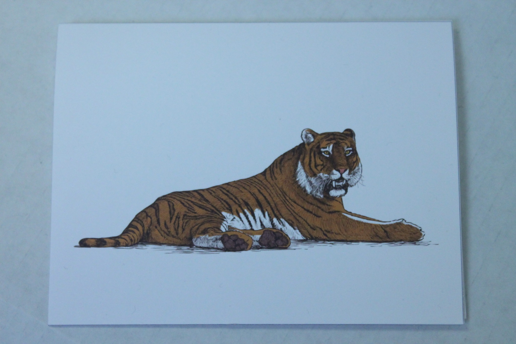 "Tiger Greeting Card - 5.5"" x 4"""