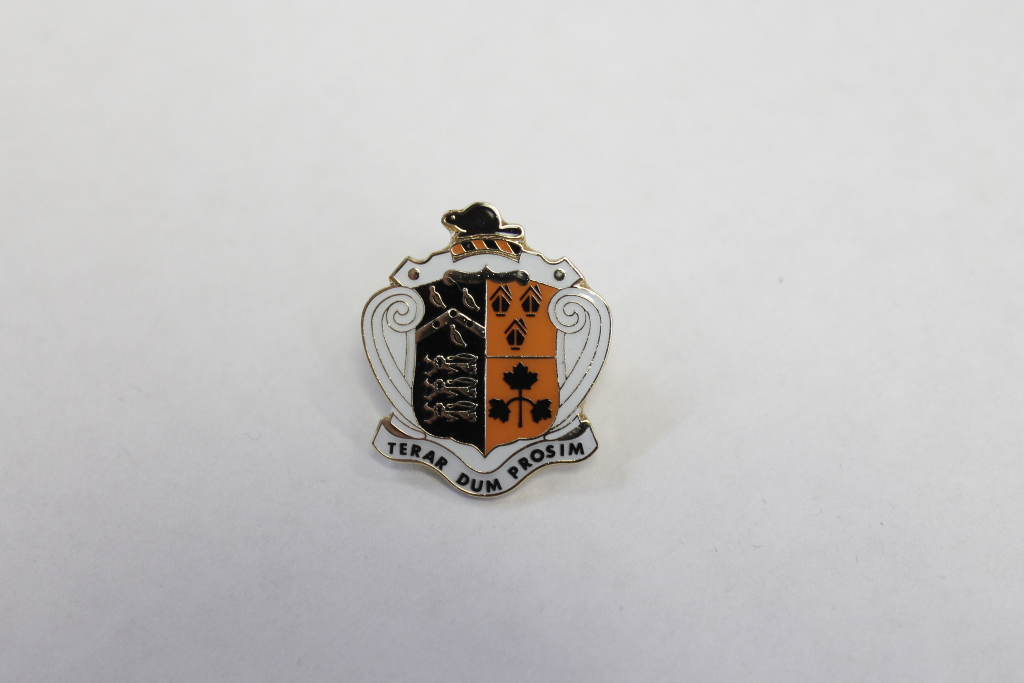 Lapel Pin -Ridley Crest