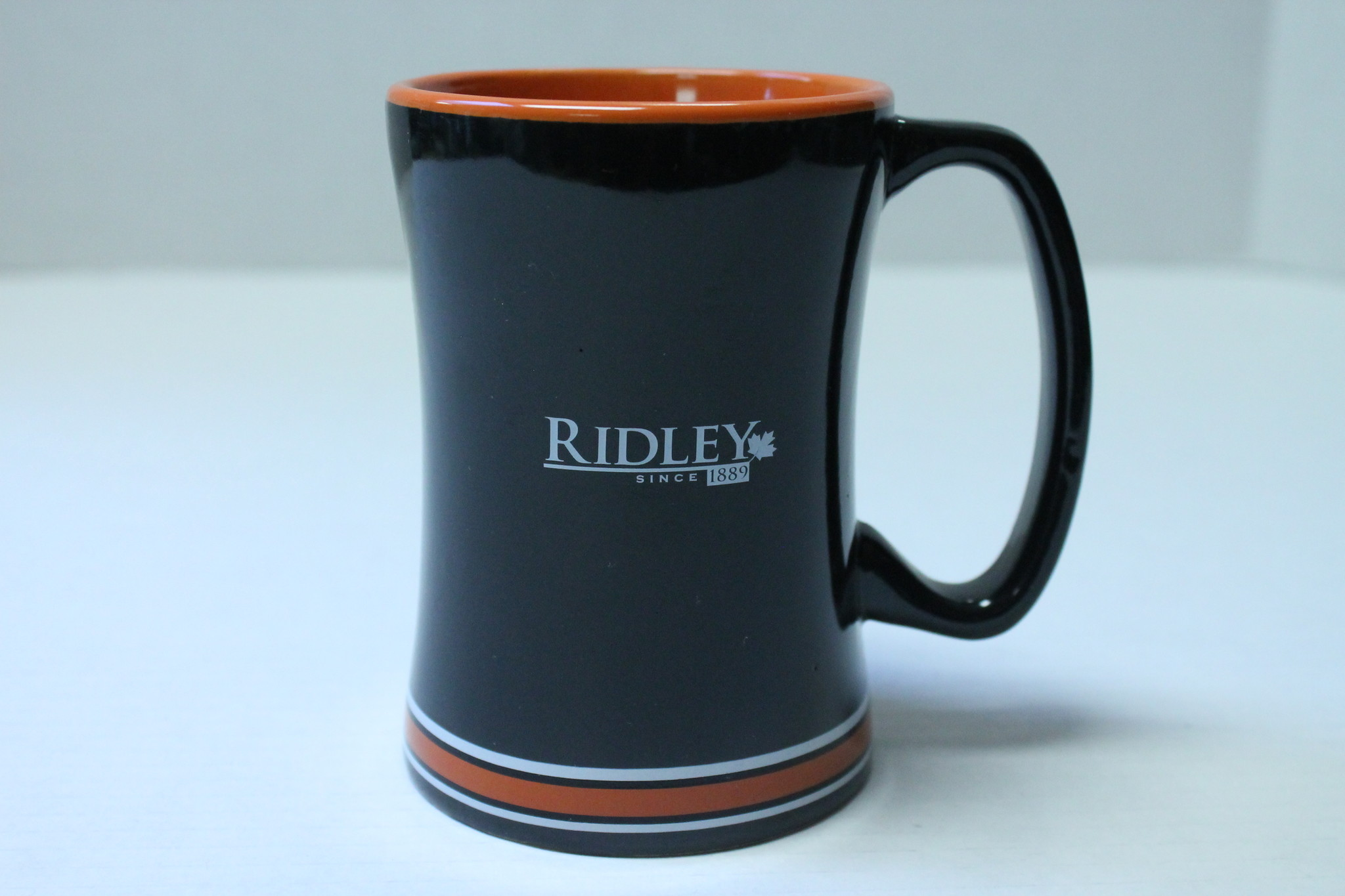 Ring of Colour coffee Mug