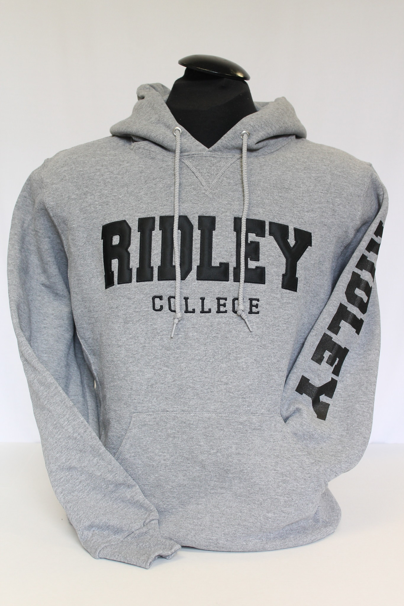 Oxford Hoodie (Ridley On Arm)