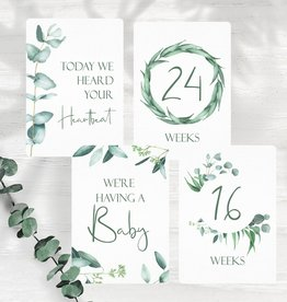 Joseph Prints Joseph Prints Australian Natives Pregnancy Milestone Cards