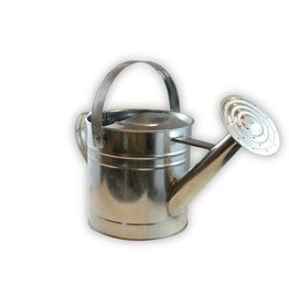Twigz Twigz Pro Galvanised Steel 3L Watering Can