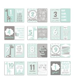 The Peanut Shell The Peanut Shell Uptown Giraffe Milestone Cards