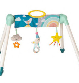 Taf Toys Taf Toys Mini Moon Take To Play Baby Gym