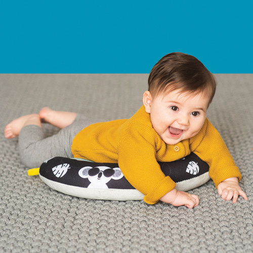 Taf Toys Taf Toys 2 in 1 Tummy Time Pillow