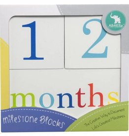 All4Ella All4Ella Milestone Blocks