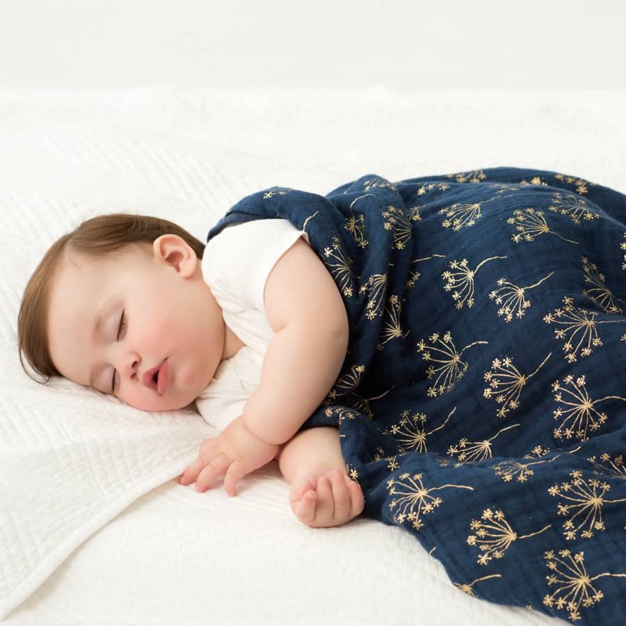 Aden + Anais Aden + Anais Classic Dream Blanket Single Metallic