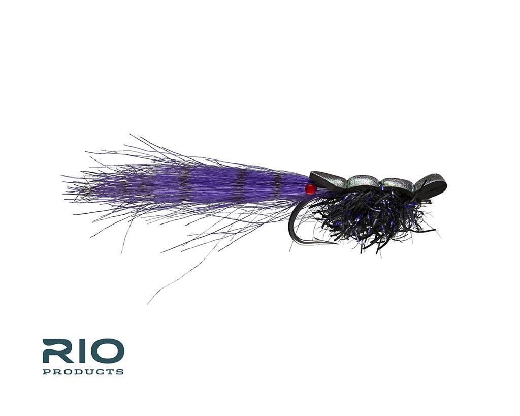 Rio Guido Shrimp