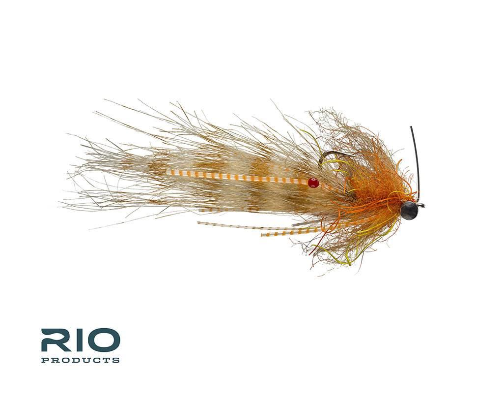Rio Shrimp Tease