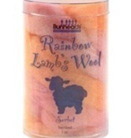 Capezio Capezio (BH401) Rainbow Lamb's Wool
