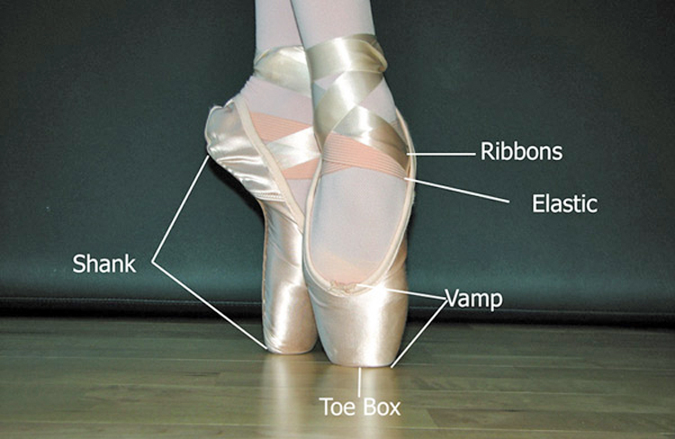 Bloch Pointe Shoe Elastic