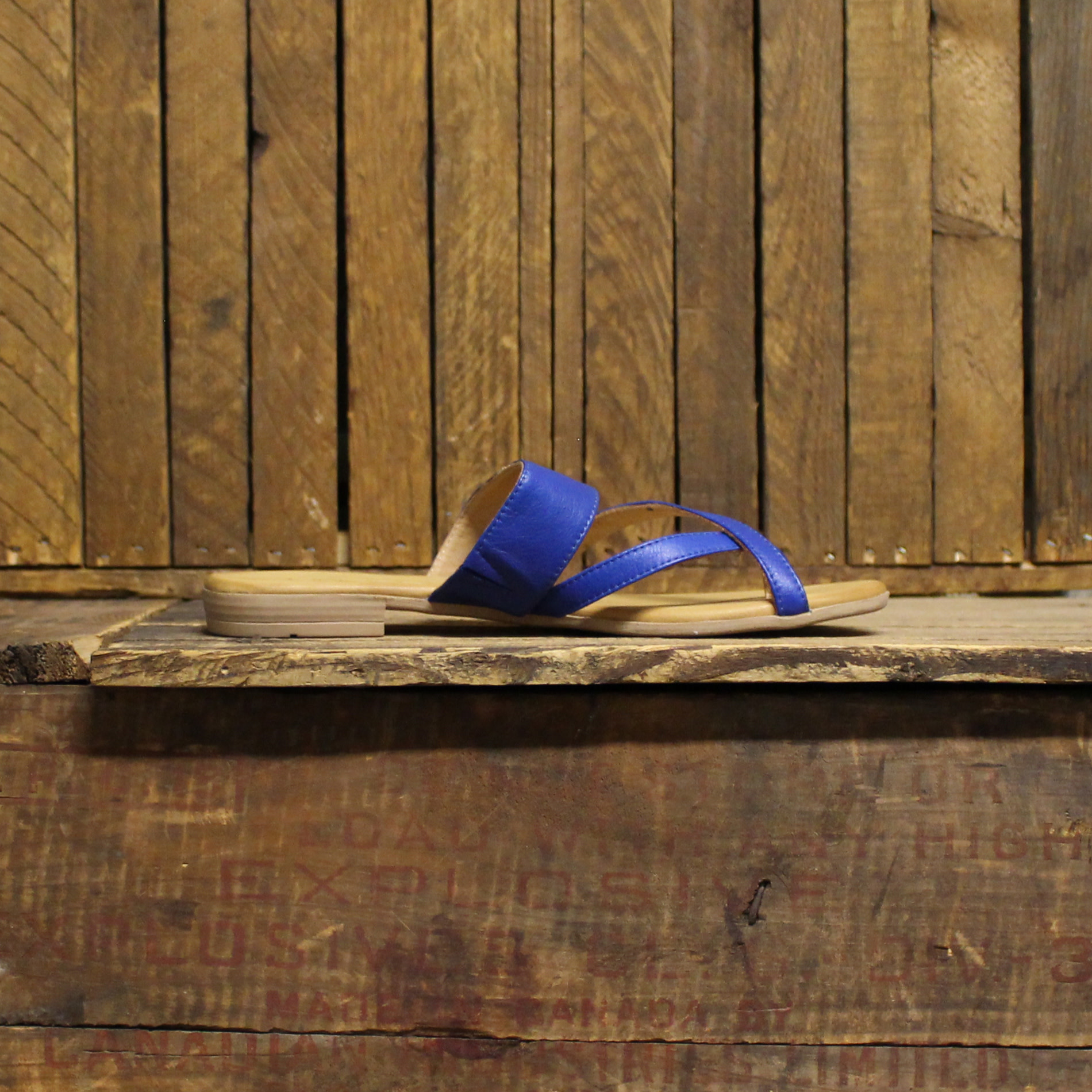 Bueno Bueno Jackson - Bright Blue