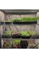 Microgreen Rack Kit