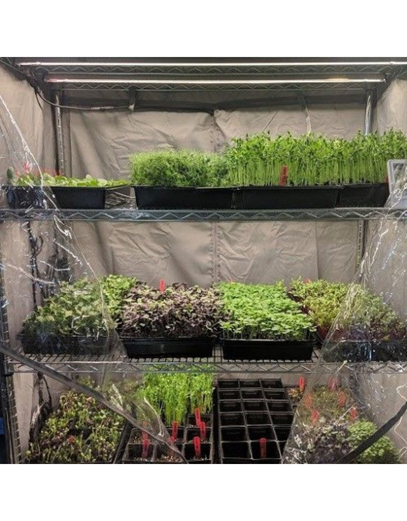 Microgreen Rack Kit