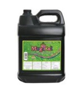 TechnaFlora MagiCal 20 Liter