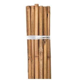 Growers Edge Grower's Edge Natural Bamboo 8 foot