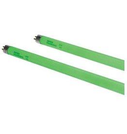 Spectralux Spectralux Green T5 HO 54 Watt