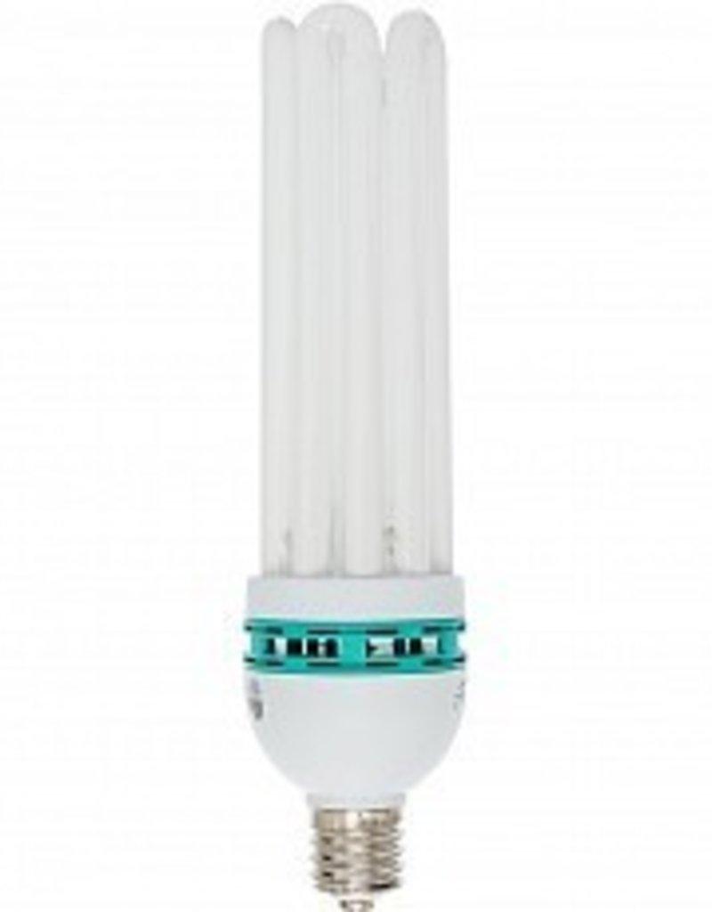 Agrobrite Bulb CFL 125W