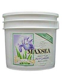 Maxsea Maxsea All Purpose