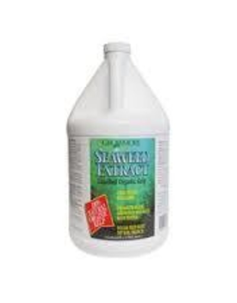 Grow More Seaweed Organic 11% Gallon
