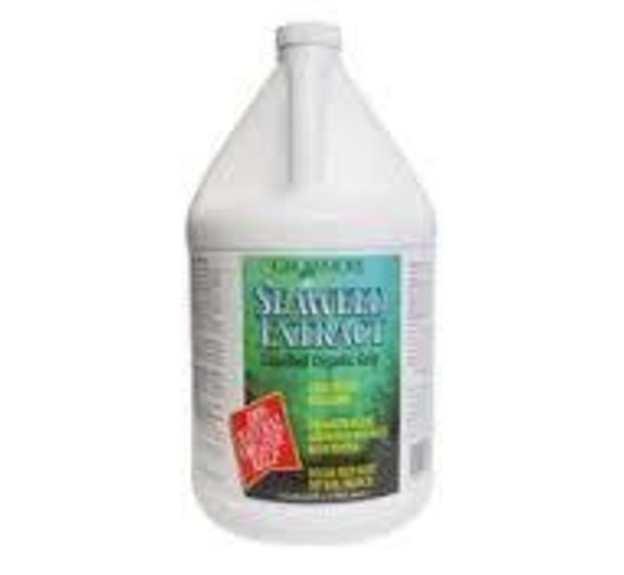 Seaweed Organic 11% Gallon