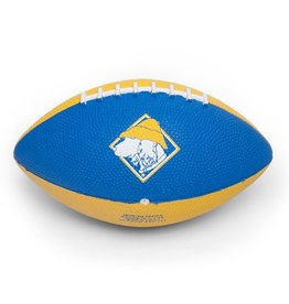 Salty Dog Rubber Football