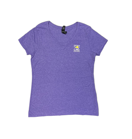 Hanes Bohicket Women's Triblend V-Neck in Grape