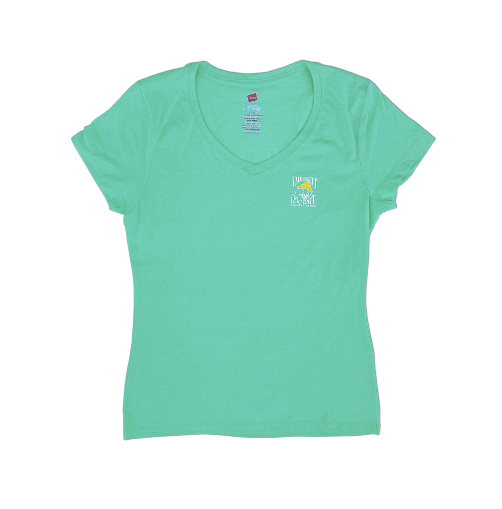 Hanes Bohicket Women's Triblend V-Neck in Breezy Green