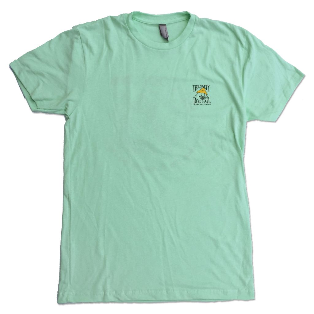 """NextLevel """"Be Cool"""" Turtle Tee in Mint"""