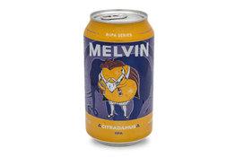 Melvin Melvin Citradamus DIPA