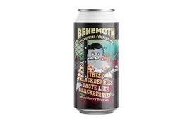 Behemoth Brewing Behemoth These Blackberries Taste Like Blackberries Blackberry Sour Ale