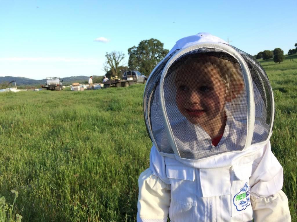The Littlest Beekeeper