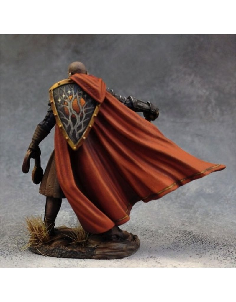 Dark Sword Miniatures VIF Male Cleric with Mace (1)