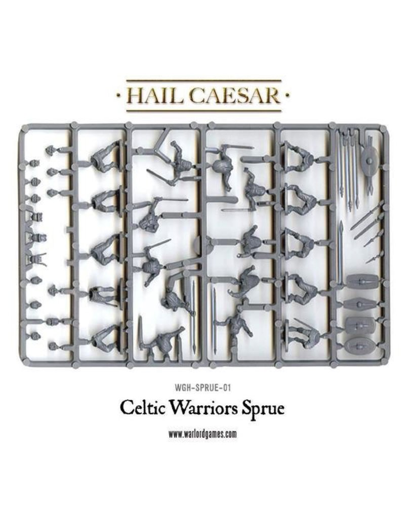 Warlord Games Celtic Warriors (40)