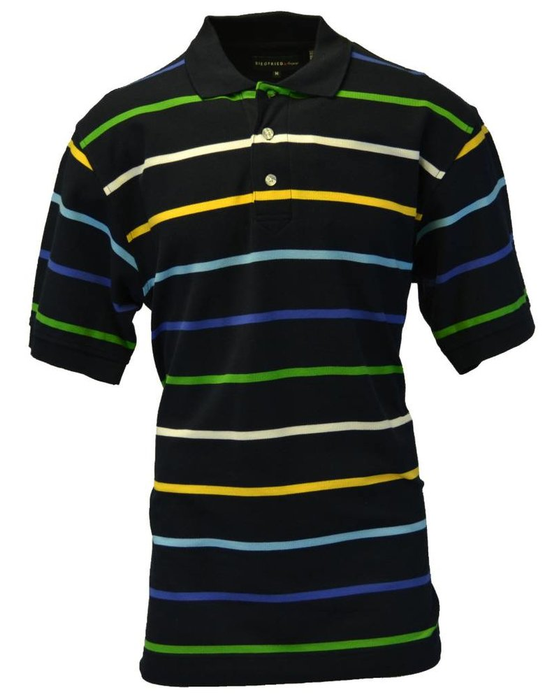 Siegfried Men's Medium Navy Polo with Multi-Colored Stripes