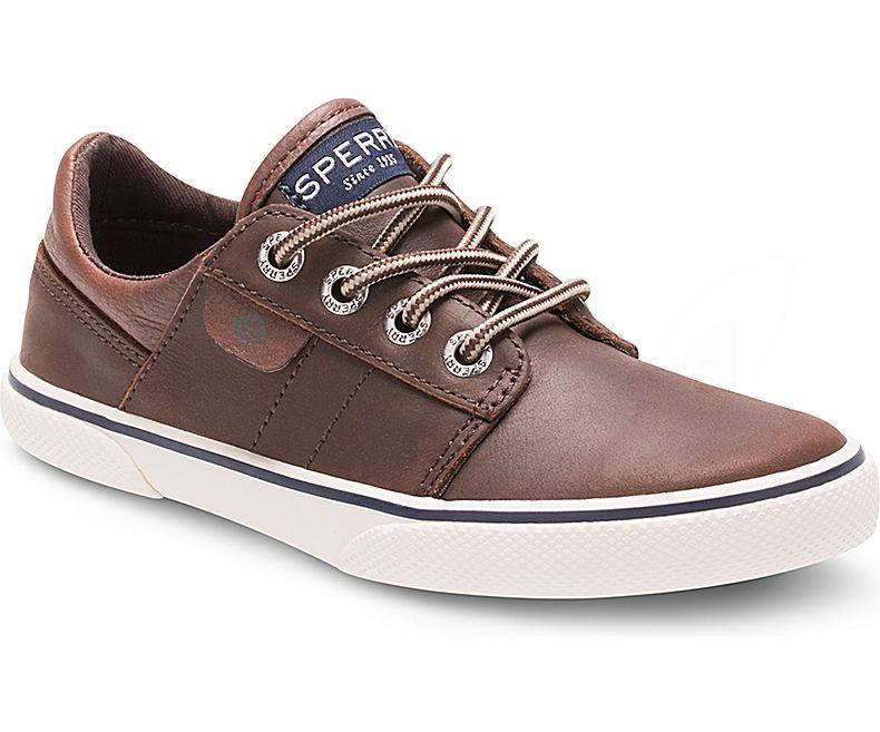 Sperry Sperry Ollie