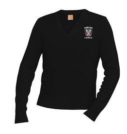 A+ Sweaters Unisex V-Neck Sweater EXTENDED SIZE - ONLINE