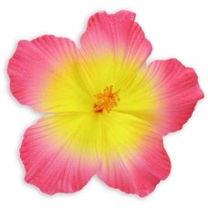 Pink Yellow Large Hibiscus Clip