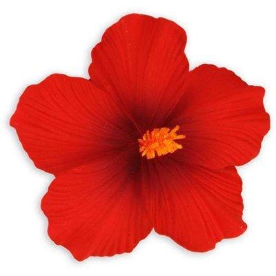 Red Large Hibiscus Clip