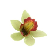 Green Hawaiian Orchid Clip
