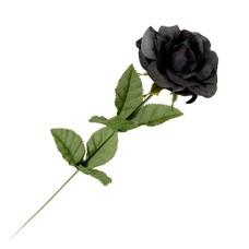 Alchemy England 1977 Black Imitation Rose