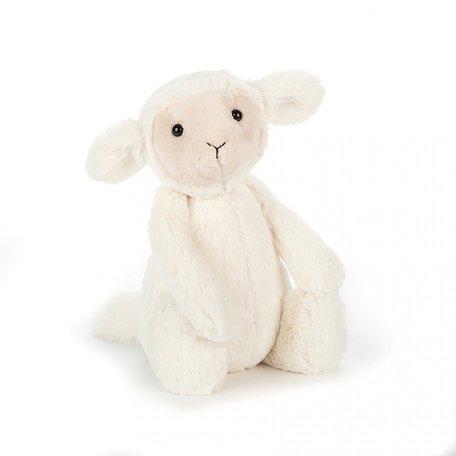 Bashful Lamb, Small