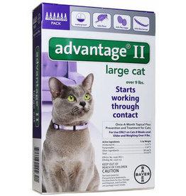 Advantage ADVANTAGE Quad Dewormer 2ct M 26-60#