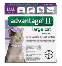 Advantage ADVANTAGE II Cat Purple 4pk 9